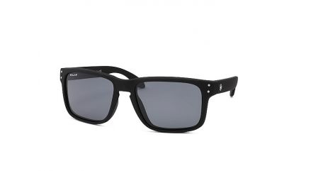 POLAR POLARIZED 330 col.80