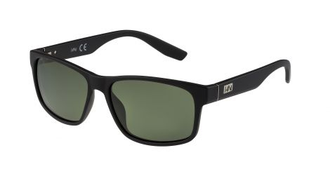 H1N1 GS1304 COL.02 Polarized