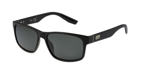 H1N1 GS1304 COL.01 Polarized